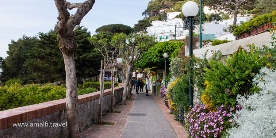 Road to the Garden of Augusto, the Island of Capri, Italy